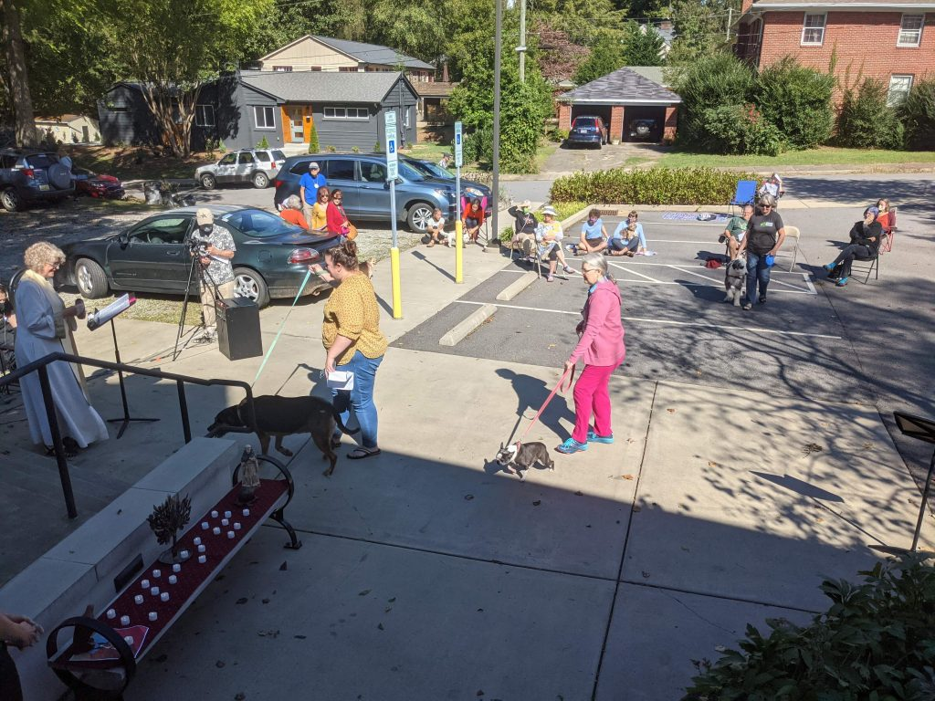 Photo of long shot of a few people gathered at our parking lot with their dogs.